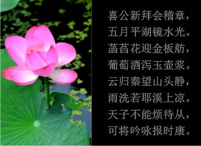 Scented lotus blossom on chinese sundial macmillan hunter sundials lotus blossom and chinese poem about friendship and wine mightylinksfo