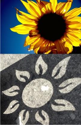 Sunflower inspiration for new sundial design